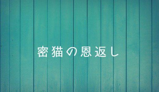 【A3!】密猫の恩返しにキュンキュン